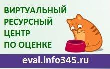 врц_с котом
